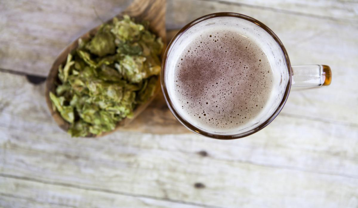 What's Up With All The IPAs?