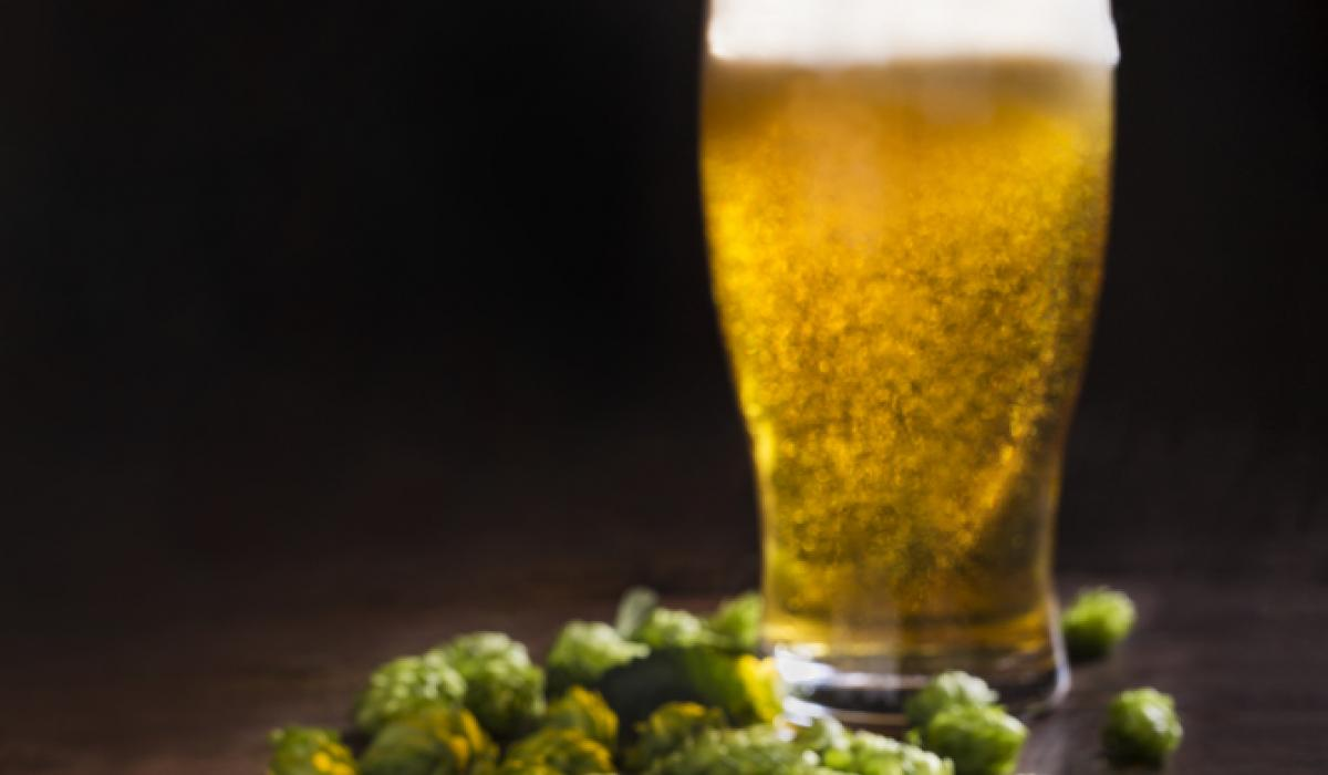 Back To Beer Basics, Part 2: European And American Ales