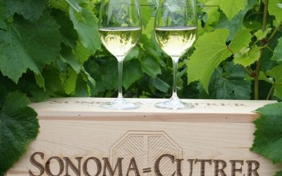 Complimentary Wine Tasting with Sonoma-Cutrer